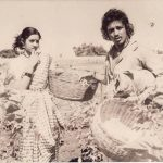 Sridevi With Kamal Haasan in 16 Vayathinile